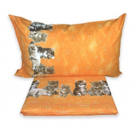 PLEIN DRAP DE LIT, DRAPS DE LA NATURE, CHAT, CHATS, NUIT, ORANGE